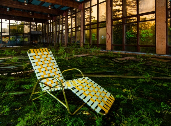 lawn chair sitting in a room overgrown with moss and ferns